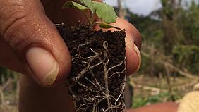 CIR, Umweltprojekt Nicaragua